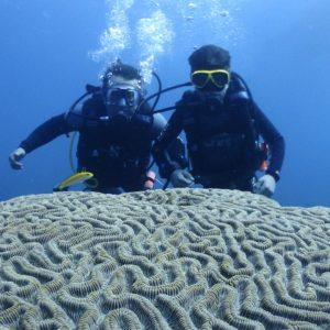 econo Poseidon Dive Center PADI