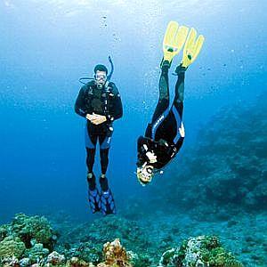 fundive-nightdives-colombia-Poseidon Dive Center PADI