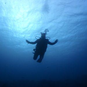voyager Poseidon Dive Center PADI