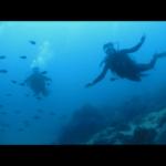 padi multilevel Poseidon Dive Center PADI