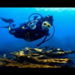 Poseidon Dive Center PADI