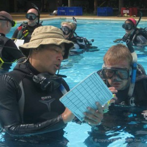 Discover Snorkel Poseidon Dive Center PADI