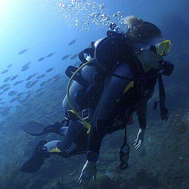Cursos-padi-deportivo-recreativo-padi-courses-open-water-padi-tauchkurse-taganga-kolumbien-Advanced-Open-Diver-poseidon-dive-center-padi