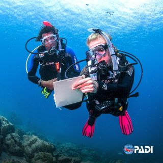 DM-Professional-PADI-IDC-PADI-Cursos-profesionales-Professioneler-PADI-IDC-poseidon-dive-center