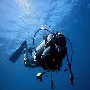 Fun-dives-inmersiones-nocturnos-colombia-Fun-Night-dives-Colombia-fun-dives-tauchen-Kolumbien-poseidon-dive-center-padi