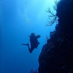 fundives-nightdives-colombia-5 Posedon Dive Center PADI