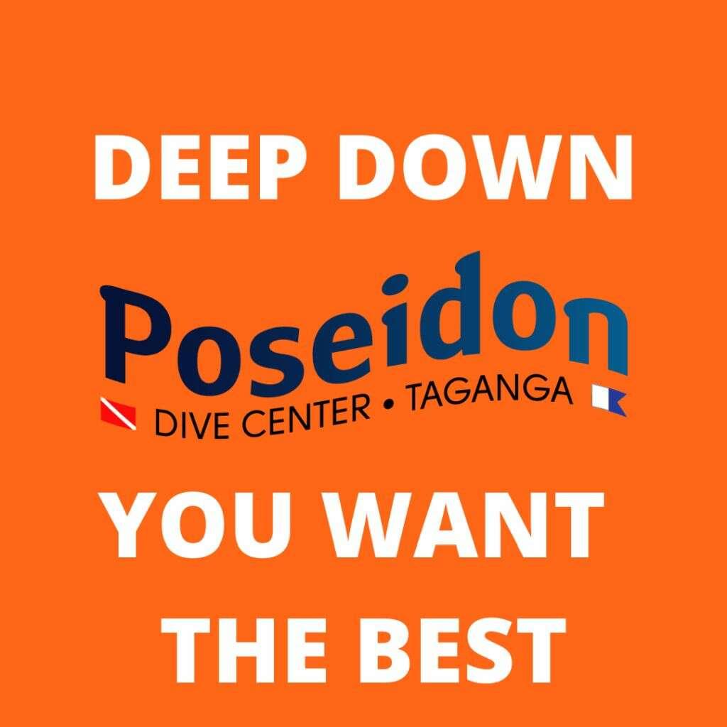 Deep-eng-about-us-sobre-nosotros-Über-uns-centro-de-buceo-padi-poseidon-dive-center