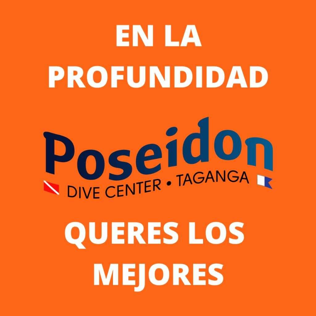 Deep-esp-about-us-sobre-nosotros-Über-uns-centro-de-buceo-padi-poseidon-dive-center