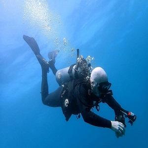Fun Dives Night Dives