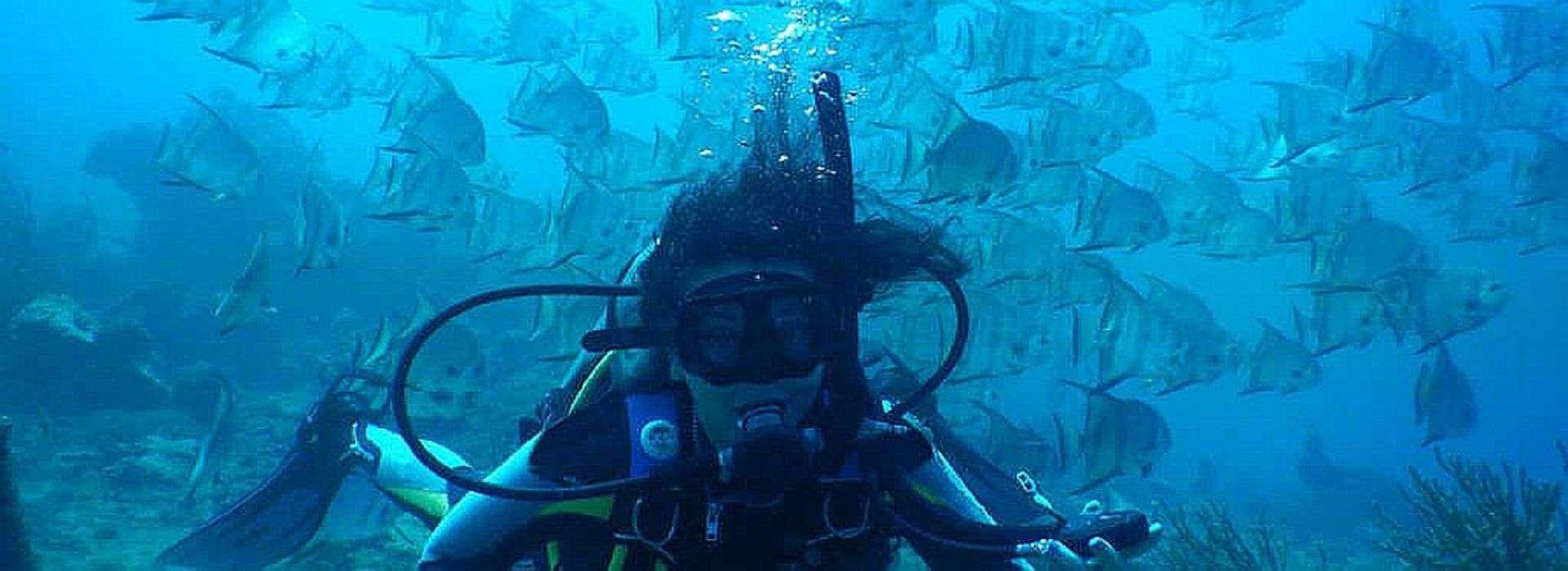 Diving tayrona park Colombia with Poseidon Dive Center PADI